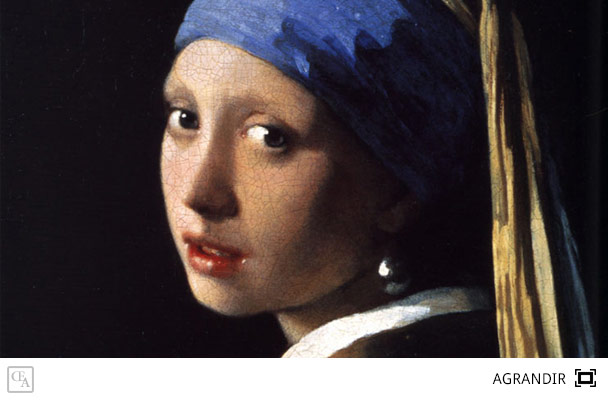 girl with a pearl earring tracy chevalier essay